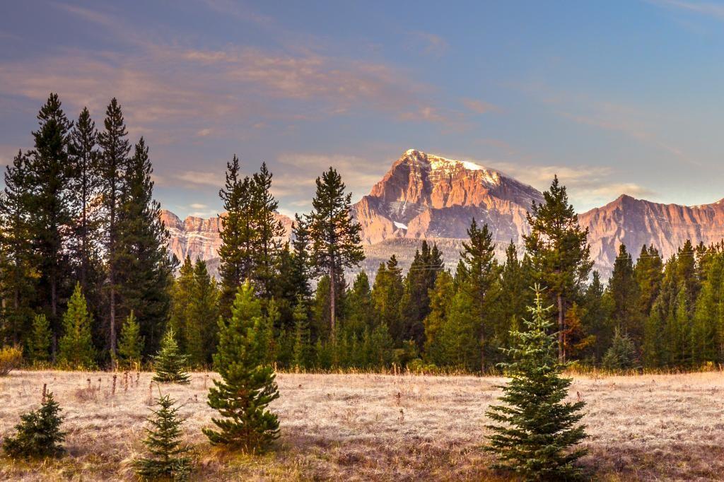 Paix.... Alberta117_zpsfa02daf9