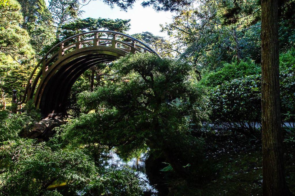 Japanese Tea Garden Divers%2020_zpsak8fij2v