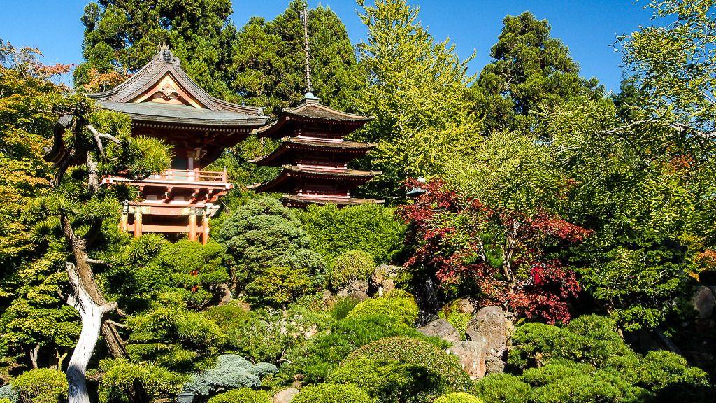 Japanese Tea Garden Divers%2025_zpsr4mpabyf