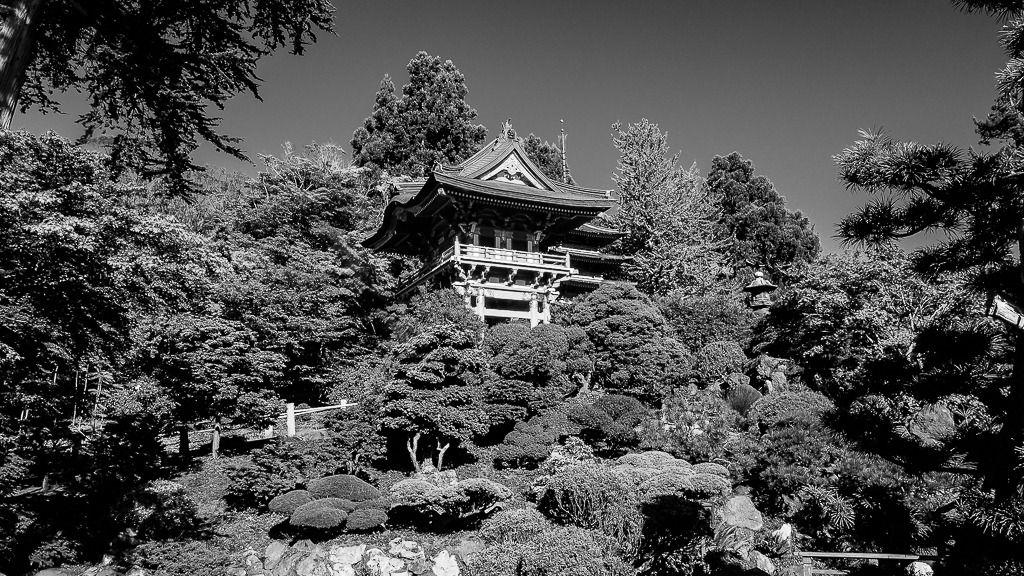 Japanese Tea Garden Divers%2026_zpsyamor7zh