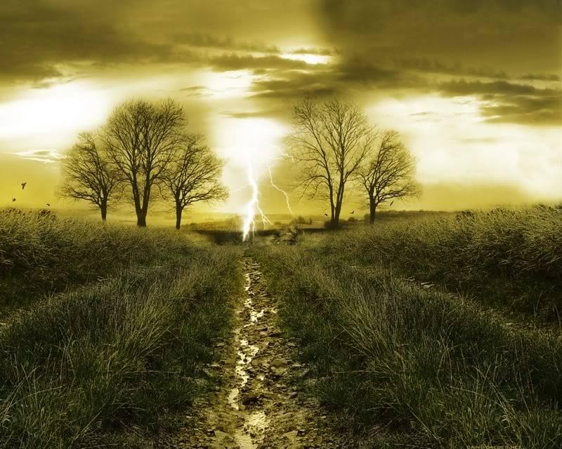 Trees (2) Background