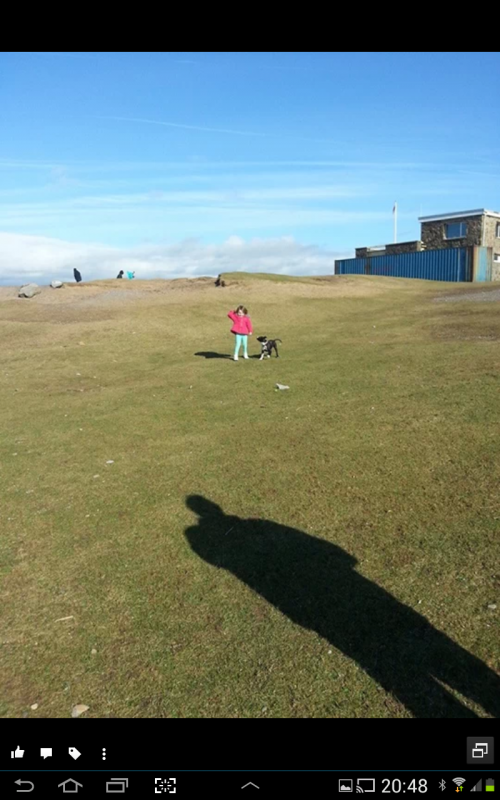 boycie walking at the beach at 4.5months old Screenshot_2014-02-24-20-48-53