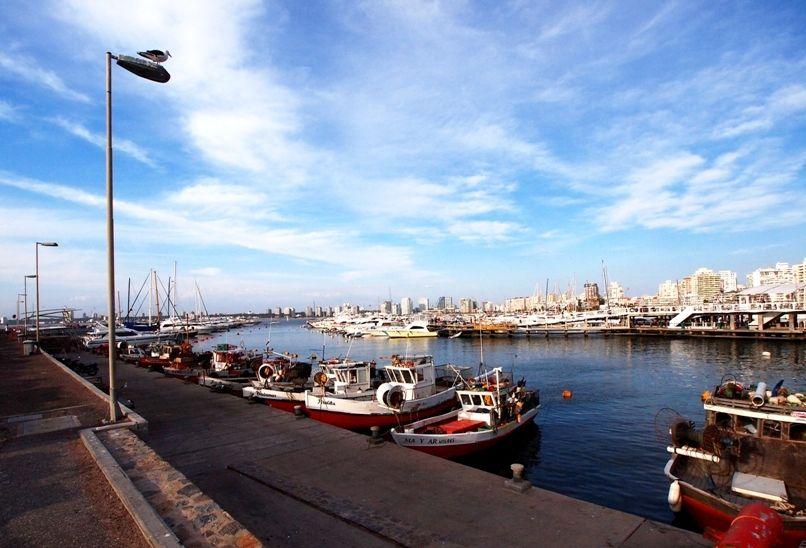 Au port depuis le port!! P1303466