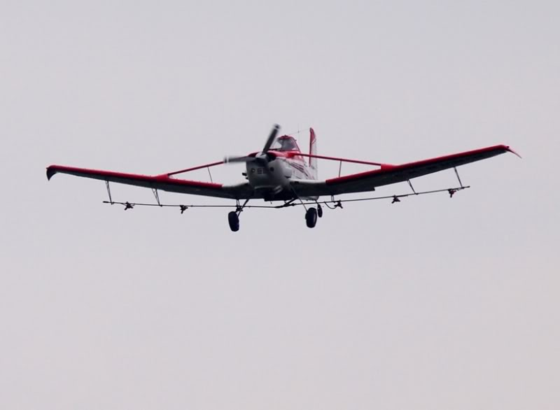 Avion agricole P3100126
