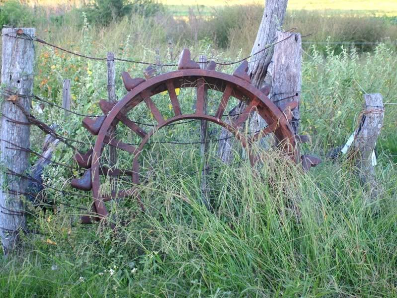 Vus a la foire agricole!! P3310311