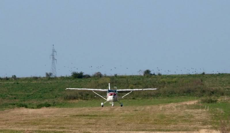 Cessna 182 Skylane P7023257
