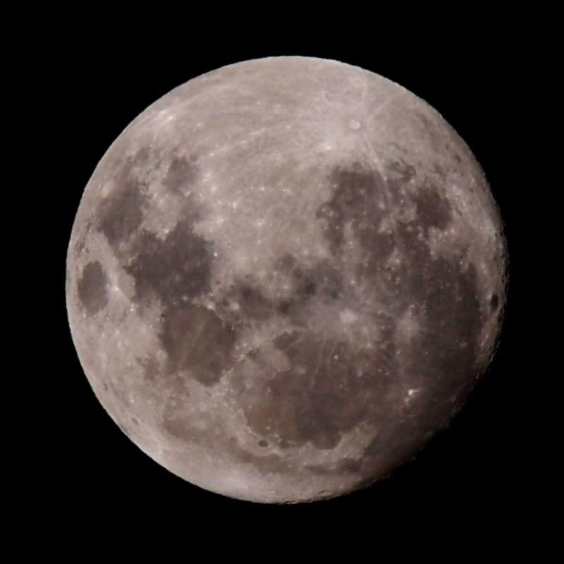 Lunes P1252593