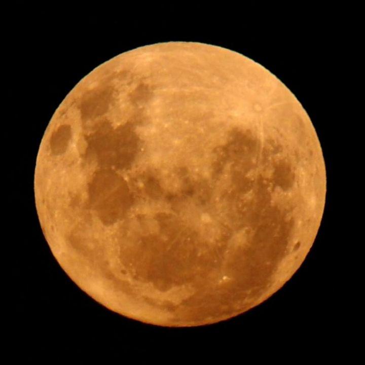Lunes P1262613