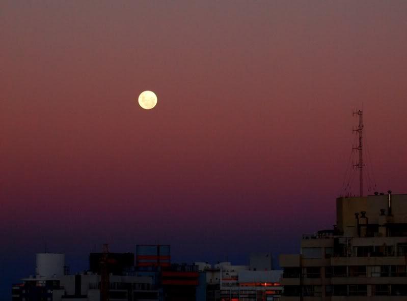 Lunes P1262614