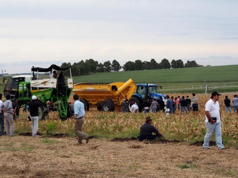 Vus a la foire agricole!!2 P3140006_zps447edf70