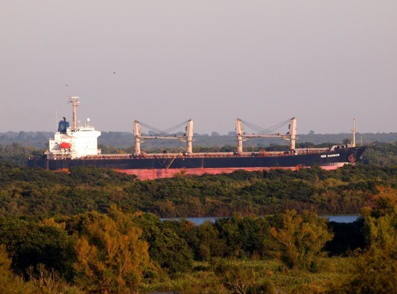 Le matin sur le fleuve Uruguay!! P3243063_zps35a664f9