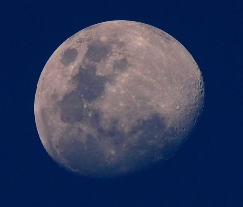 La lune d'apresmidi P9261572