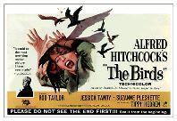 Les Oiseaux!! Birds%20film%20poster_zpspvyyw7ks
