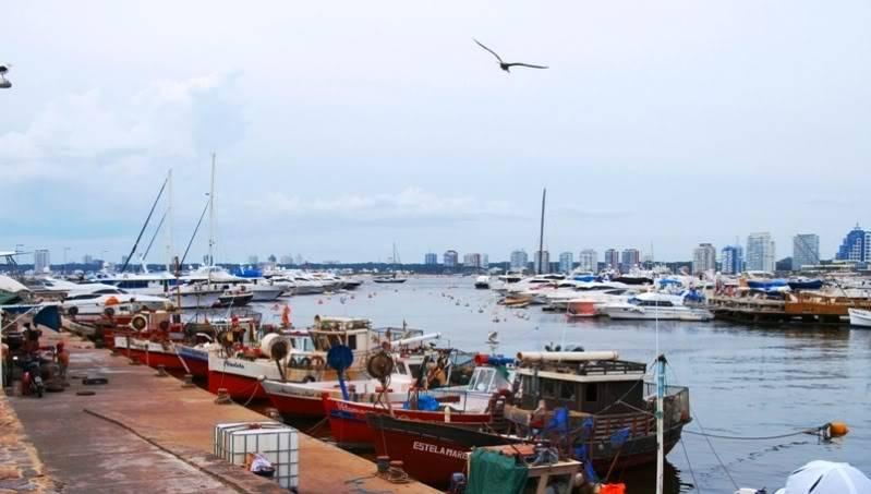 Au port et la baie P1188895