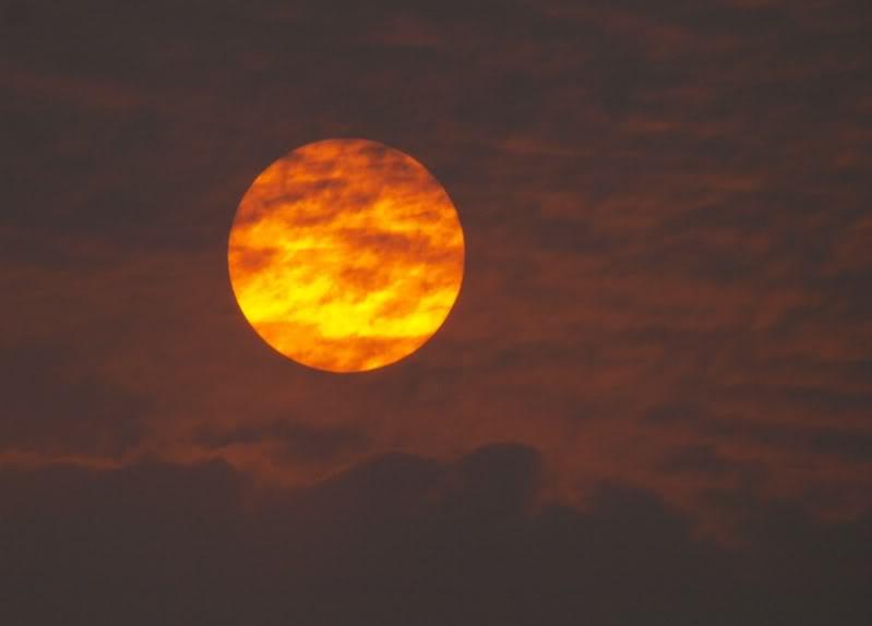 Drole de soleil P8220900
