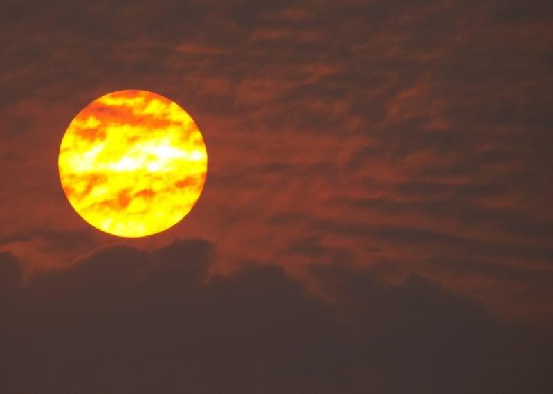 Drole de soleil P8220901