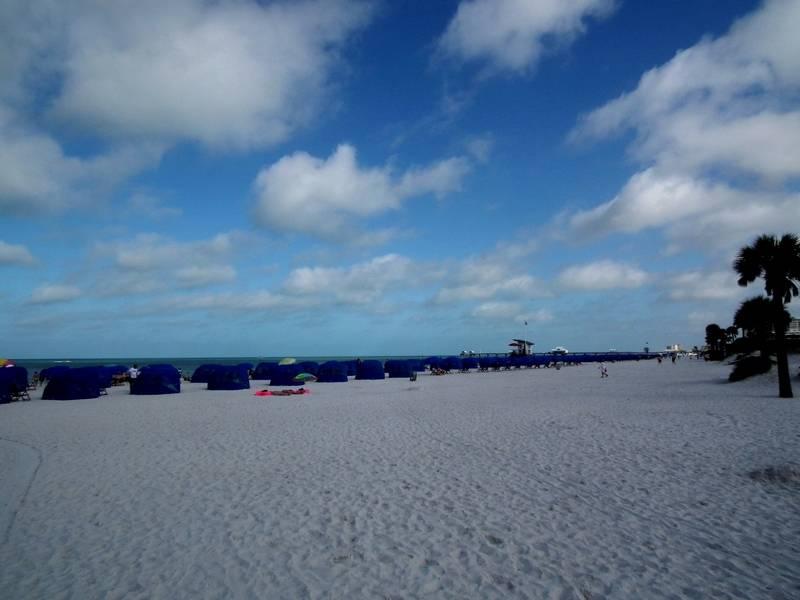 Tampa,Florida,USA. DSCF2604_zpsyybcalhv