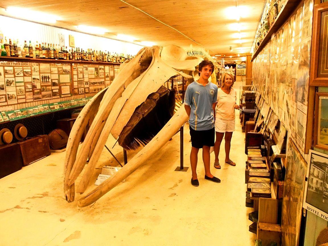 Au Musée de la Mer et Insectes!! P1150002_zpshtu19gho