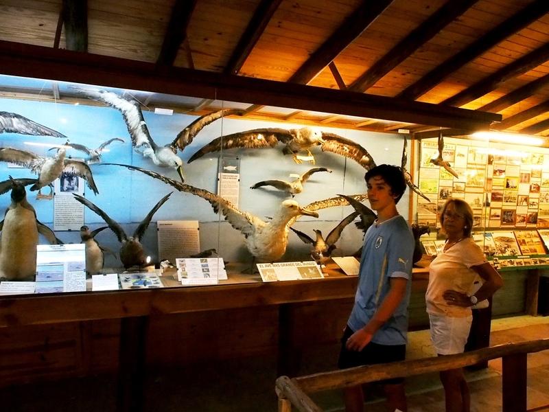 Au Musée de la Mer et Insectes!! P1150015_zps9ljriqlg