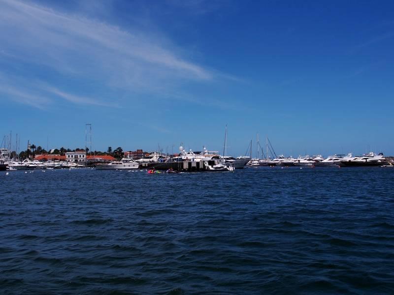 Sortie de péche et bateaux au port P1210010_zpsvco8hasb