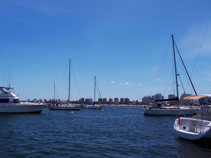 Sortie de péche et bateaux au port P1210014_zpssrpmnv2n