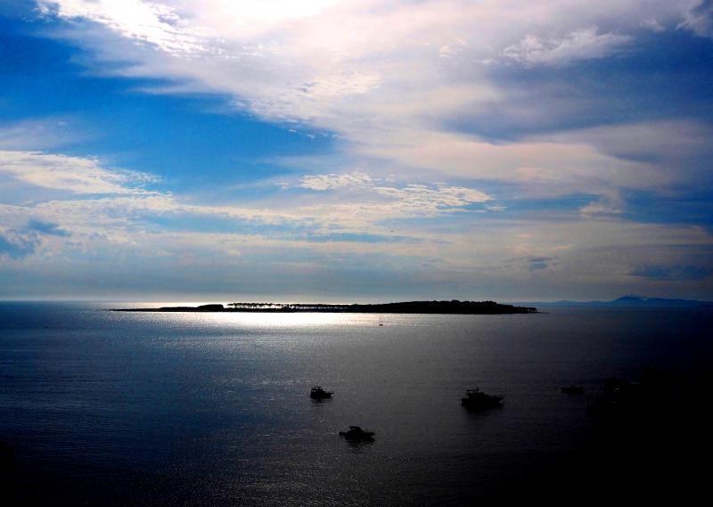 Soirs a Punta del Este-Ajout P1270016-copia_zps98003ae5