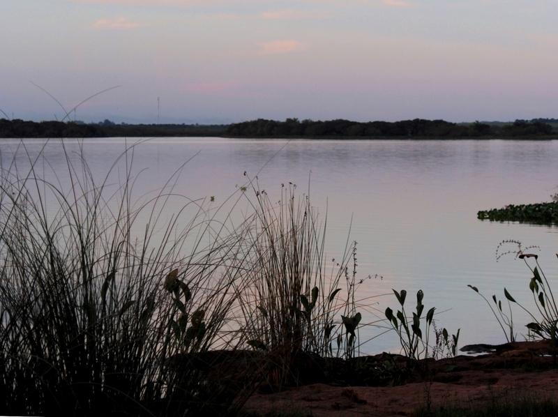 "Au bord du fleuve ""Uruguay""!! P3190018_zpsqulomdbr"