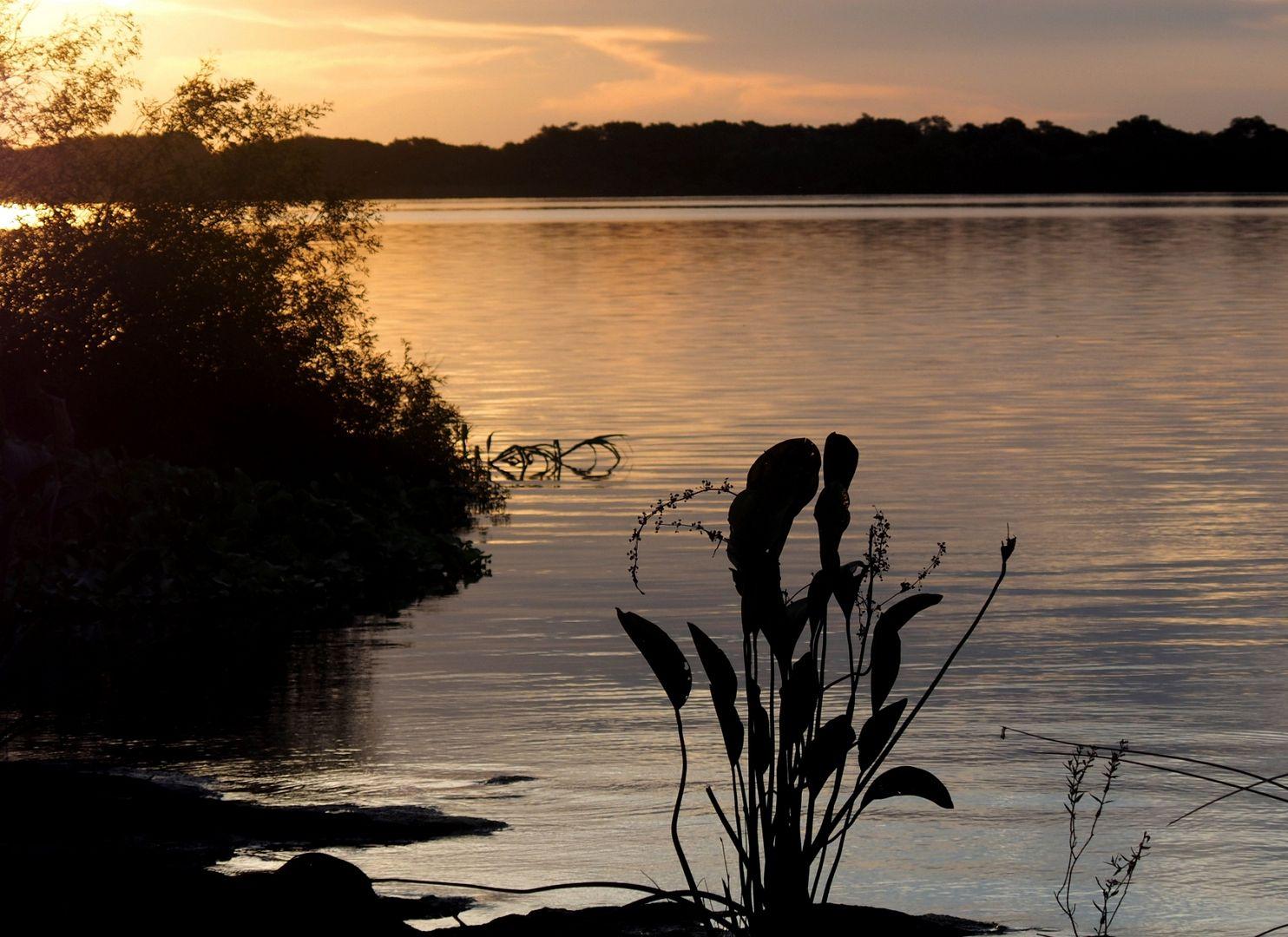"Au bord du fleuve ""Uruguay""!! P3190019_zpsg6lelfeu"