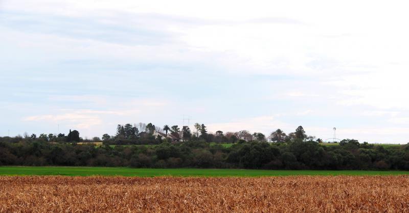 La ferme depuis les champs P7120013_zps33fdf871