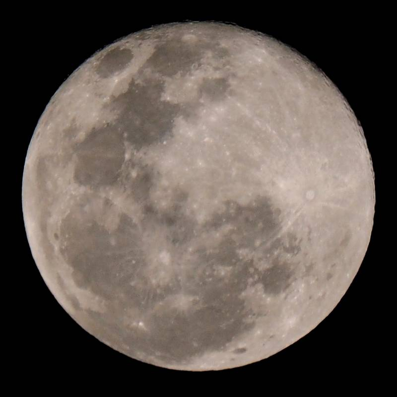 Lune et halo!! P7310043_zpsflyz7mve