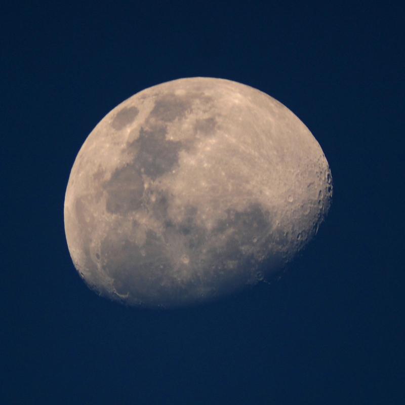 La lune du 23 octobre PA230045_zpsahdvgsms