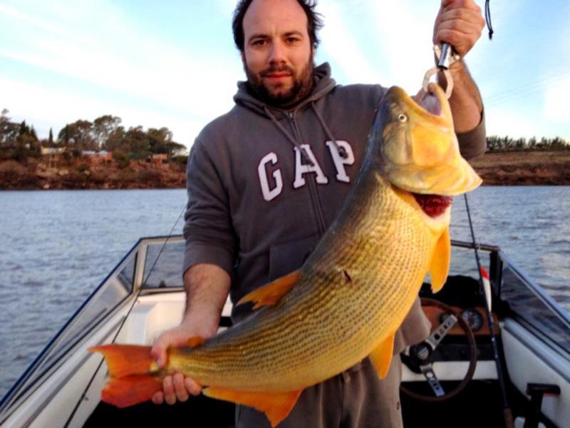 Poissons du fleuve Uruguay(Ajoute!!) IMG_0571_zpsa5ceca9c