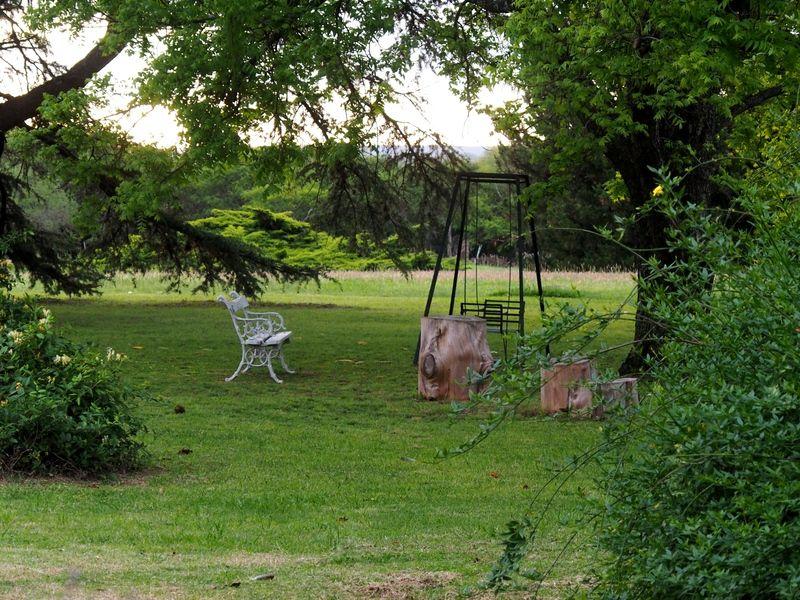 Soir au jardin #2 PB020014_zps8ig1dkbo