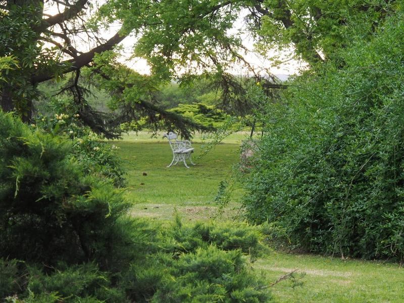 Soir au jardin #2 PB020015_zps3ypahp3p