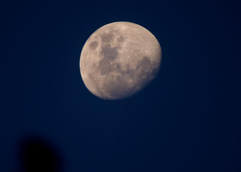 Lune et soleil P7036515