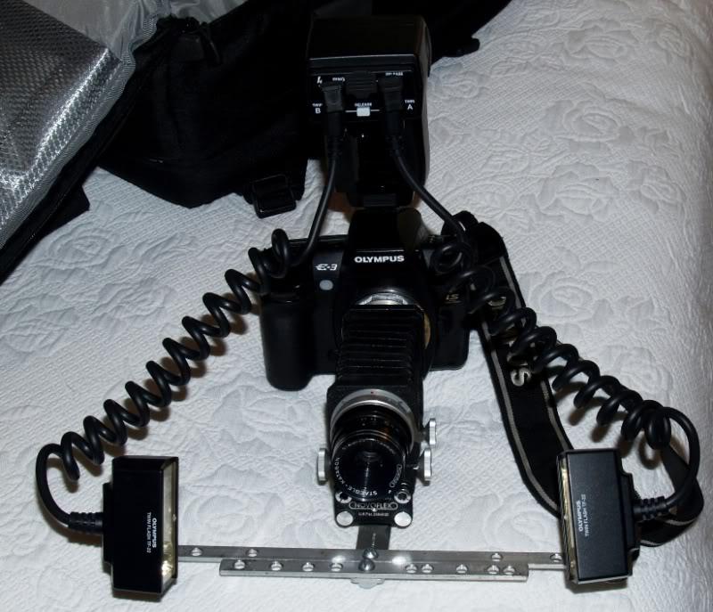 Stylus 1, autre technique d'éclairage en macro. P7172302