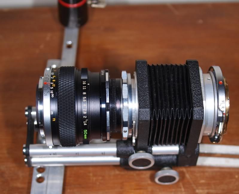 Stylus 1, autre technique d'éclairage en macro. P7186754