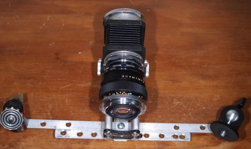 Stylus 1, autre technique d'éclairage en macro. P7186756