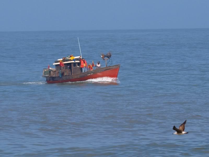 Bateaux et surfer!! P9057098b