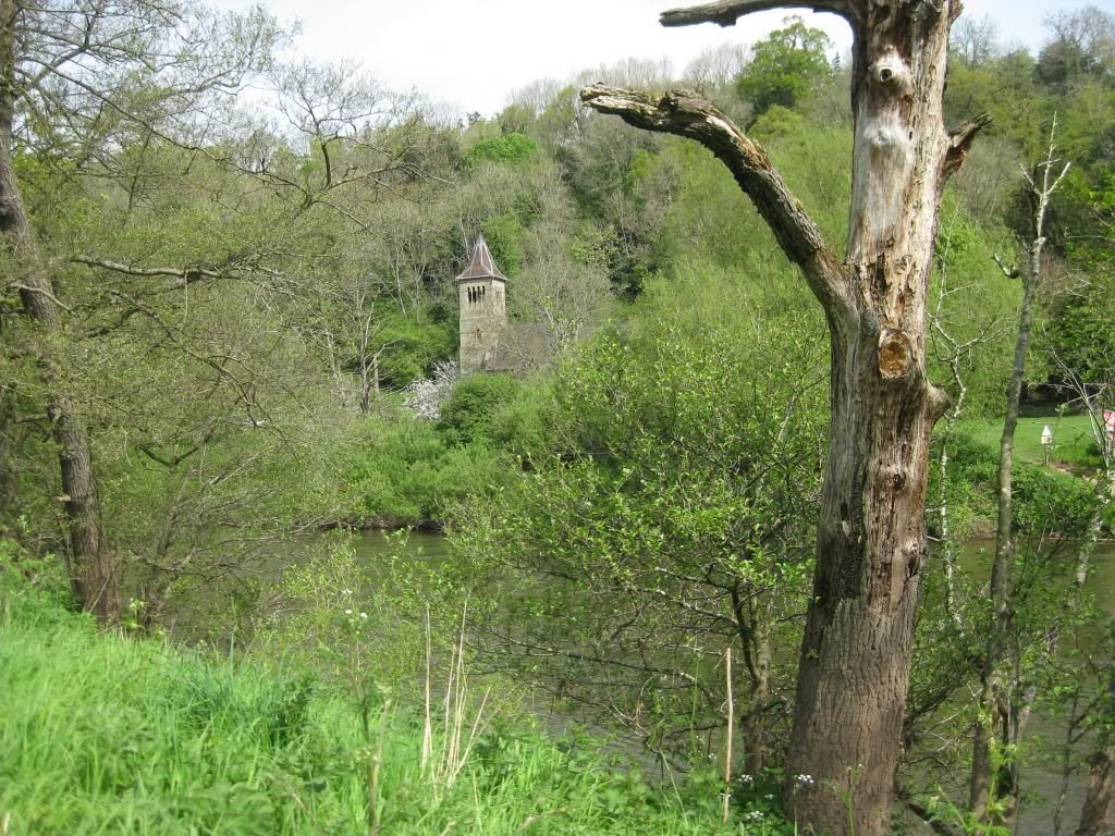 Todays River Walk  (Pic Heavy) IMG_3587_zps6006b6a2
