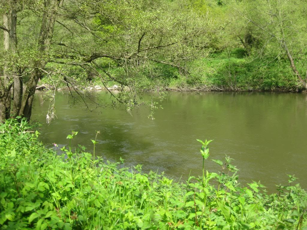 Todays River Walk  (Pic Heavy) IMG_3594_zpsc8cf3301