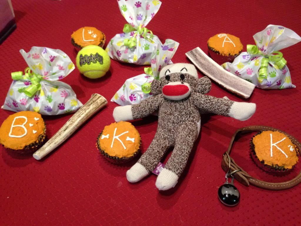 Korra's Best Buddies..Happy Birthday Korra!! - Page 9 IMG_2398_zps285484aa