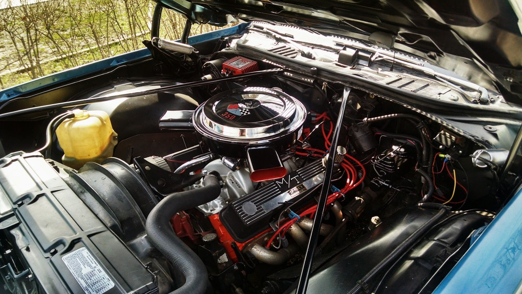 3rd gen engine compartments were boring when new IMG_20150413_105150_zpssofnbxys