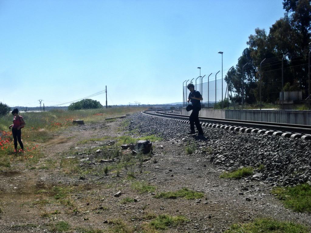 Línea Zafra-Jerez de los Caballeros DSC02855_zps8c185a49