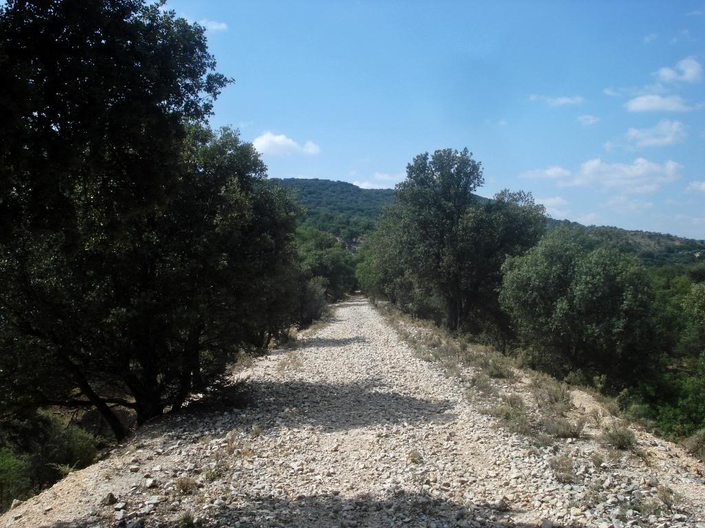 Ferrocarril del Tajuña - Página 3 DSC03894b_zps89a9dd95