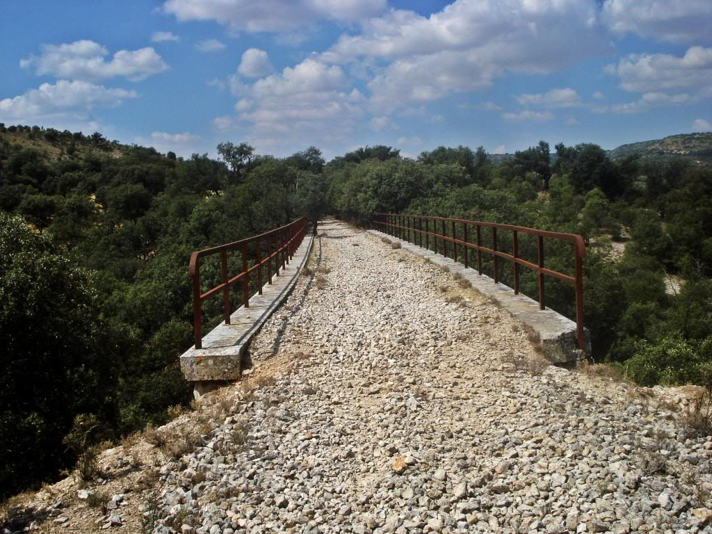 Ferrocarril del Tajuña - Página 3 DSC03895b_zps53fb27b5