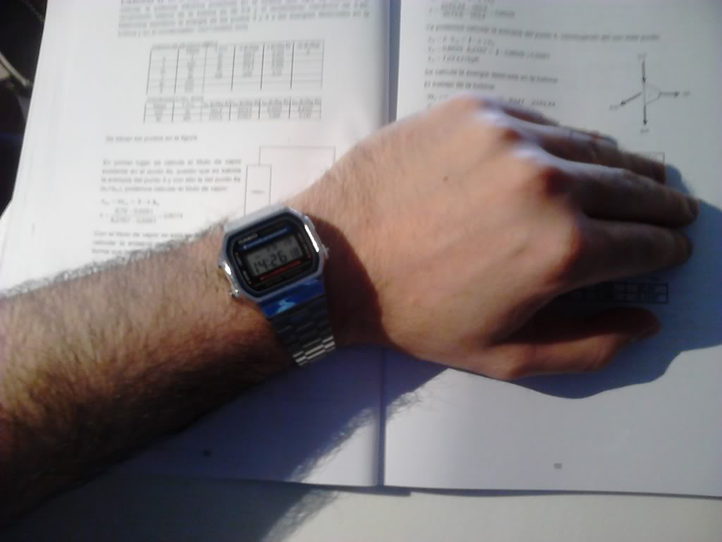 ¿Que reloj llevamos hoy? - Página 38 DSC_0042_zpsa2385e8c