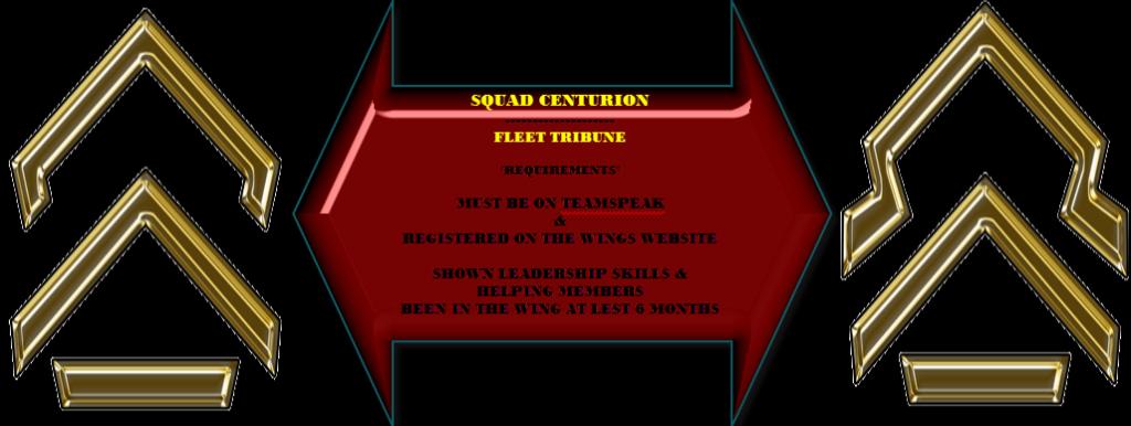 WING RANKING SYSTEM SQUADCENTURION-FLEETTRIBUNE_zps7e86572e