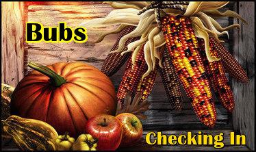NOVEMBER CHECKING IN - Page 4 18ott7-Fall-Harvestck-bub