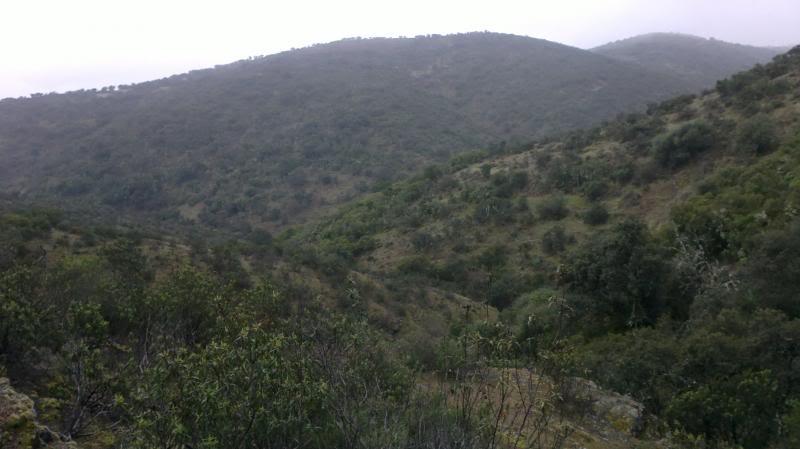 Bajando pòr el Arroyo Descuernavacas. 2014-04-06-062_zps965f6f15
